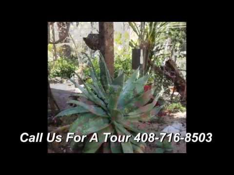 Orchid Villa Residential Care Home Assisted Living | Menlo Park CA | California | Memory Care