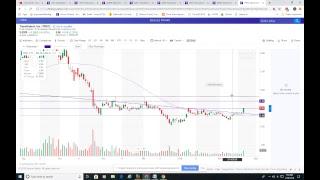 Market wrap 2/20/19 by Dr J at 11:djia rut amzn aapl amd cgc atnm trxc tndm