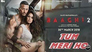 Tum Meri Ho | Full Video song  | Baaghi 2 | Tiger Shroff | Disha Patani