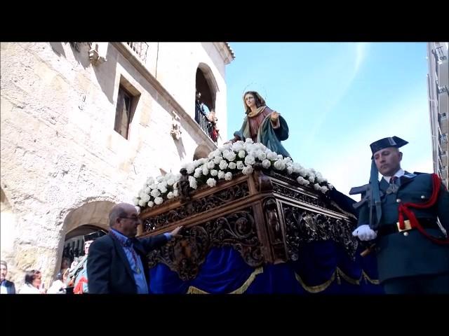 Cofradía de la Santísima Resurrección Zamora 2017