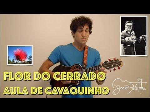 Flor do Cerrado por João Felippe -  DE CAVAQUINHO