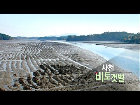 [경남100경 완전정복] 13경. 사천 비토섬 갯벌