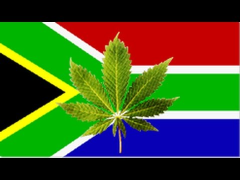 What's Next for Cannnabis Legalization in South Africa?