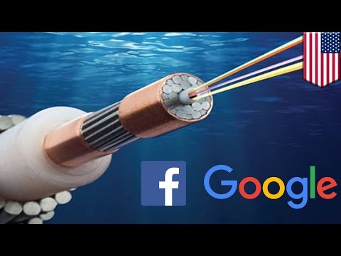 Underwater cables: Google, Facebook building ultra fast HK to LA deep sea cable network - TomoNews