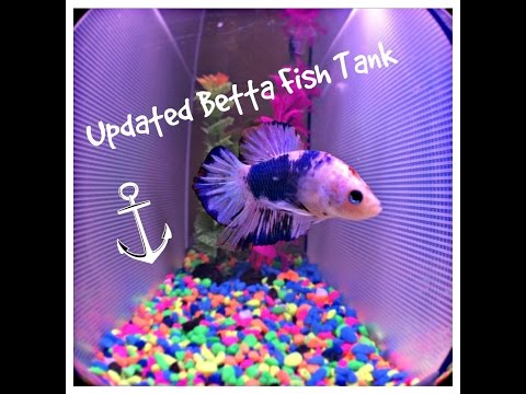 Updated Betta Fish Tank