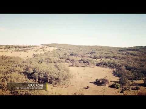 Manilla #1 NSW Pig Hunting Property Drone Flyover