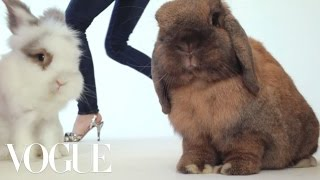 Twinkle Toes: The Chicest Party Shoes Are Only a Bunny Hop Away