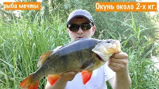 рыбалка на малой речке  Трофейный ОКУНЬ около 2-х кг