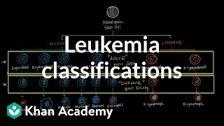Leukemia classifications