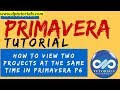 How to View 2 projects at the same time in Primavera P6 || Primavera || dptutorials