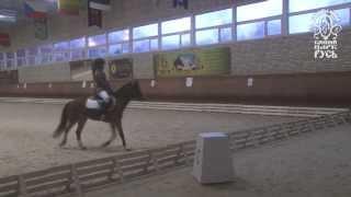 «Хрустальный пони»: 23 ноября состоялся 3й этап соревнований