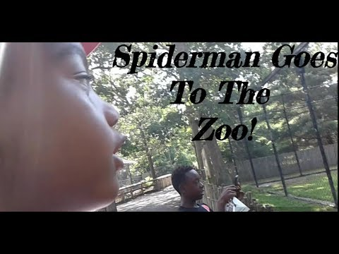 Spiderman Goes To The Zoo | Theo's Birthday Pt. 2 | Army Family Vlogs