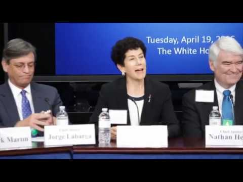 Increasing Access to Justice, Fines & Fees Panel - LSC White House Forum 2016