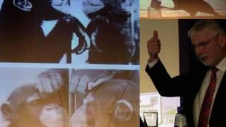 Tierische Intelligenz: Lernverhalten und Werkzeuggebrauch | Wie einzigartig ist der Mensch? (2)
