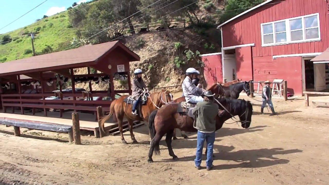 hollywood sign griffith park horseback riding youtube