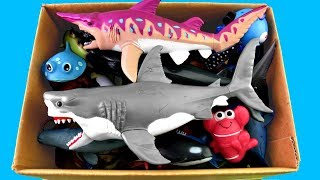 Lot of Wild Animals Sea Animals Learn Colors for Kids Video