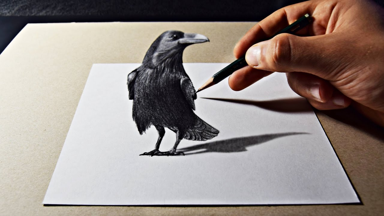 3D Pencil Art Raven Drawing - YouTube