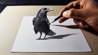3D Pencil Art Raven Drawing