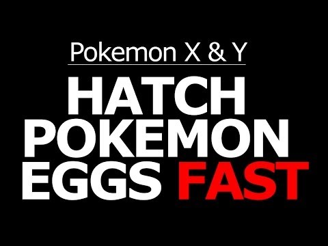 How to hatch eggs faster in pokemon light platinum