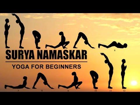 surya namaskar  yoga for beginners  youtube