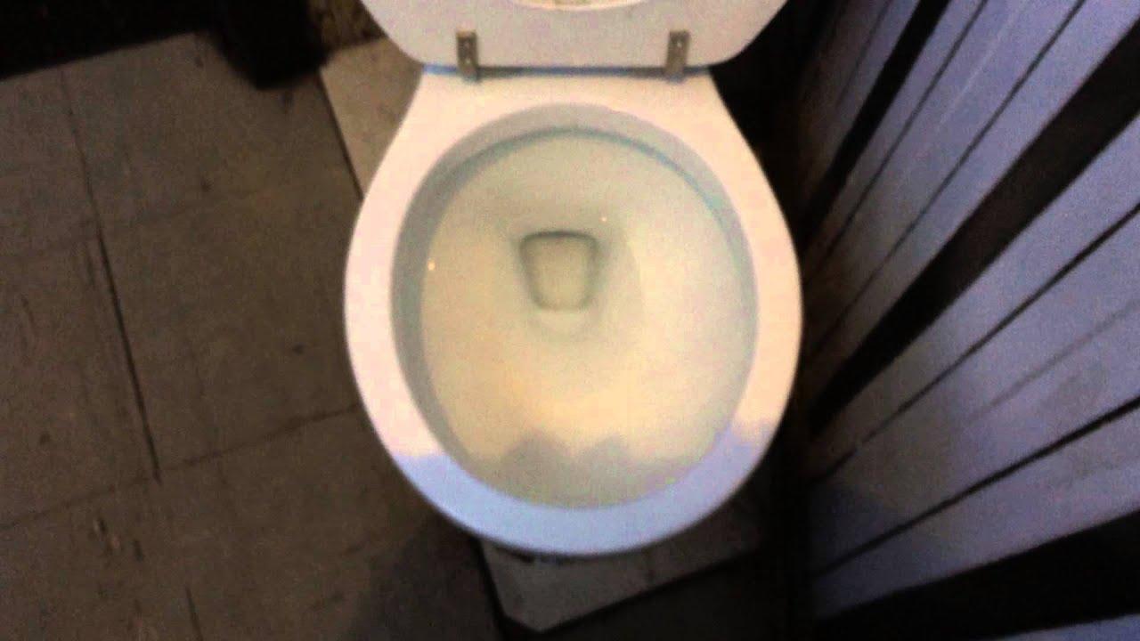 4767 Delta Prelude Toilet