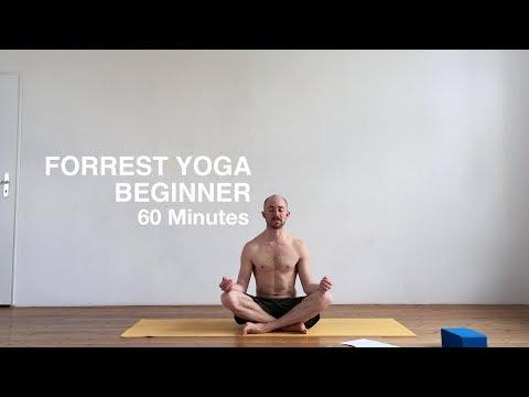 FORREST YOGA // BEGINNER // 60 MINS