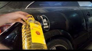 Arabanın Yakıt Deposuna Benzin Yerine Çiçek Yağı Koyarsak Ne Olur? Kırsal Benzini Bulduk :D