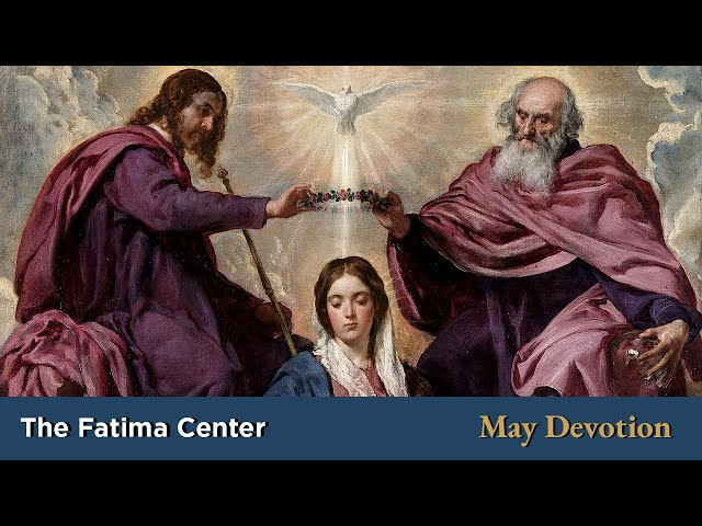 May Devotion: Where Mary is Queen, Christ is King | Monthly Devotions with Fr. Shannon Collins