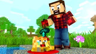 Ocelot Life / Villager Life / Skeleton Life - Craftronix Minecraft Animation