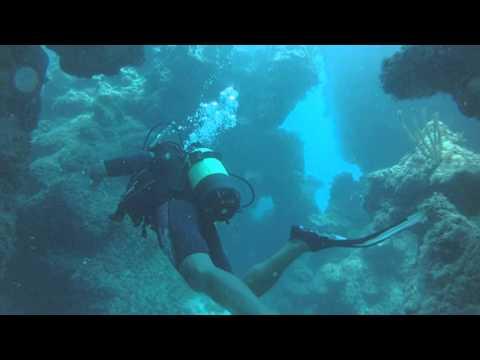 Meilleurs moments de ma plongée à Cuba