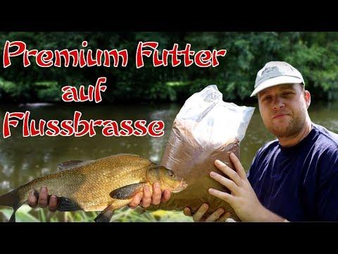 Gezielt auf Flussbrassen- Das neue Premium Futter