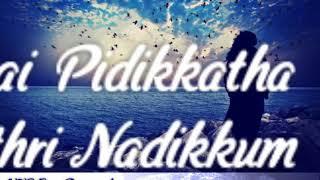En Kadhalana Enaku Romba pidikum  (Thanimai Kadhal 2 female version )