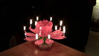 Chinese Birthday 14 Candle Flower Plus Dismantle And Switch Off...