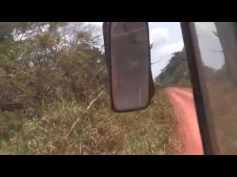 Congo-Kinshasa--- Route Kisangani-Butembo  2/2/11