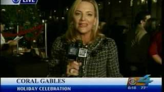 VILLAGE OF MERRICK PARK TREE LIGHTING 11-19-09 CH 4 AT 6PM.wmv Thumbnail