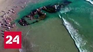 Российский корабль-призрак прибило к берегам Калифорнии - Россия 24