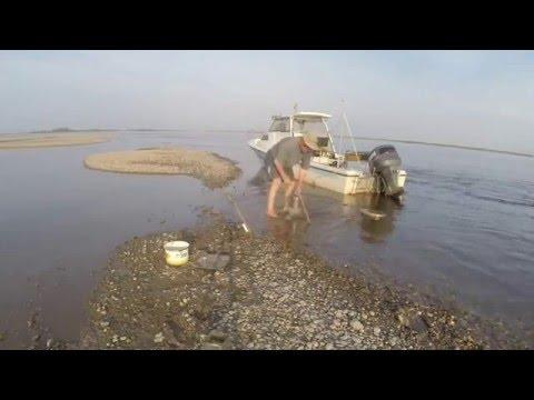 Как рыбачить видео кинокамера спорт