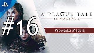 [PS4] A Plague Tale: Innocence #16 - Rozdział XIII - Pokuta - Rozdział XIV - Więzy krwi cz.1