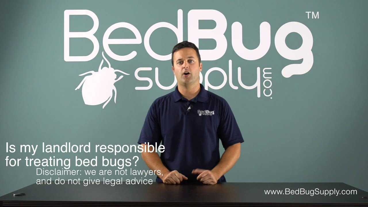 Bed Bugs And Renters: Is Your Landlord Responsible?
