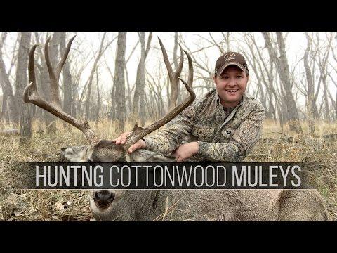Hunting Mule Deer in South Dakota