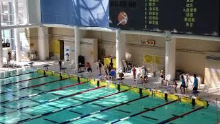 Publication Date: 2019-10-17 | Video Title: (福德學校)16/10/2019 九龍北區小學游泳比賽,女子