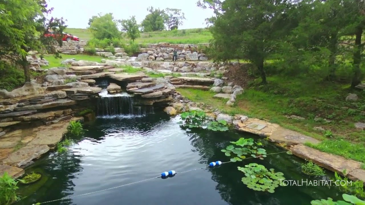 Natural Swimming Pool Oasis in Tennessee