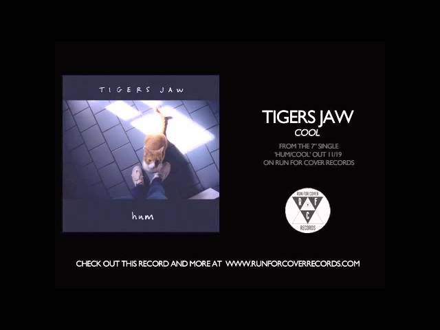 tigers-jaw-cool-acoustic-runforcovertube