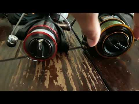Daiwa BG 8000 Review/6 Reels Comparisons
