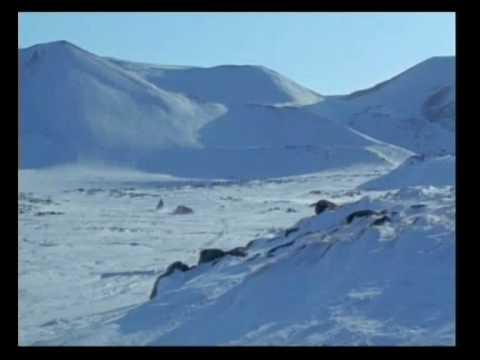 tarihin buz kokulu insanları ESKİMOLAR - iNUİTLER