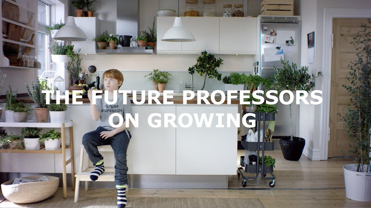 Ikea The Future Professor On Growing Youtube