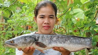 Awesome Cooking Fish Fry With Green Chili Delicious Recipe - Fry fish Recipes  -Primitive Technology