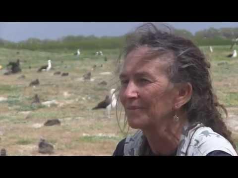 Conversation with Cynthia Vanderlip HD