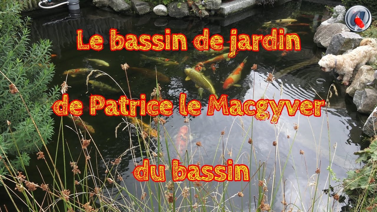 Le bassin de jardin de Patrice le Macgyver du bassin