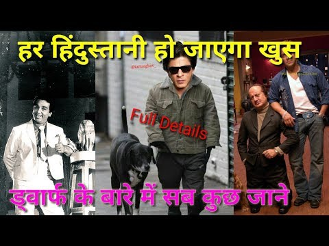 Exclusive Shahrukh Khan Dwarf Movie VFX Full Details And Much More